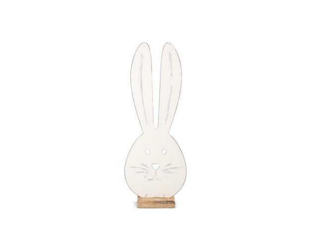 Hocico conejo pequeño