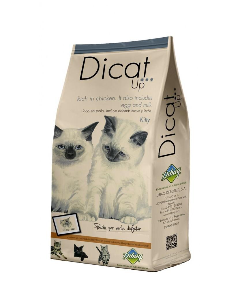 Dicat Up kitty 1,5 Kg