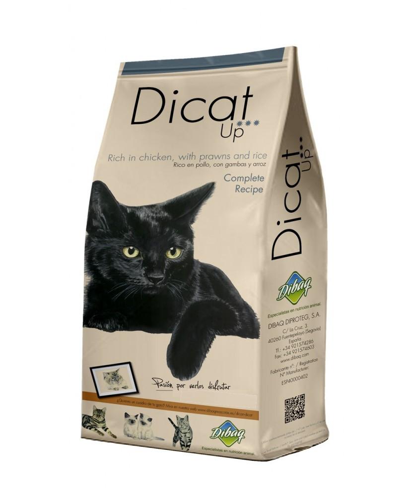 Dicat Up 14 Kg Compl. Recipe