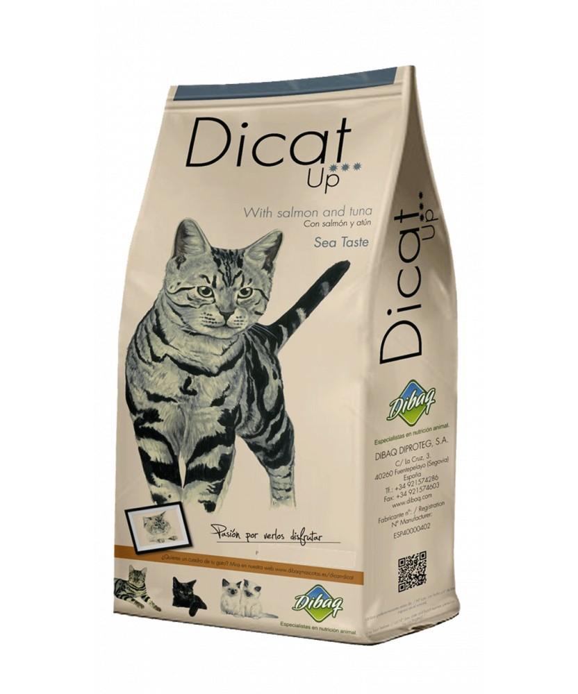 Dicat Up 14 Kg Sea taste