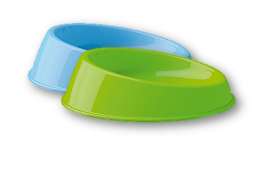 Bowl Cat Azul - Verde