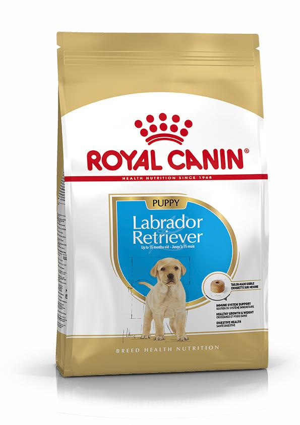 Labrador Junior 12 Kg.