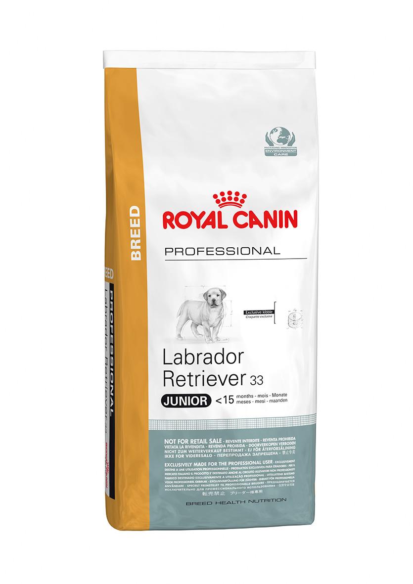 Pro Labrador Puppy 16 Kg.