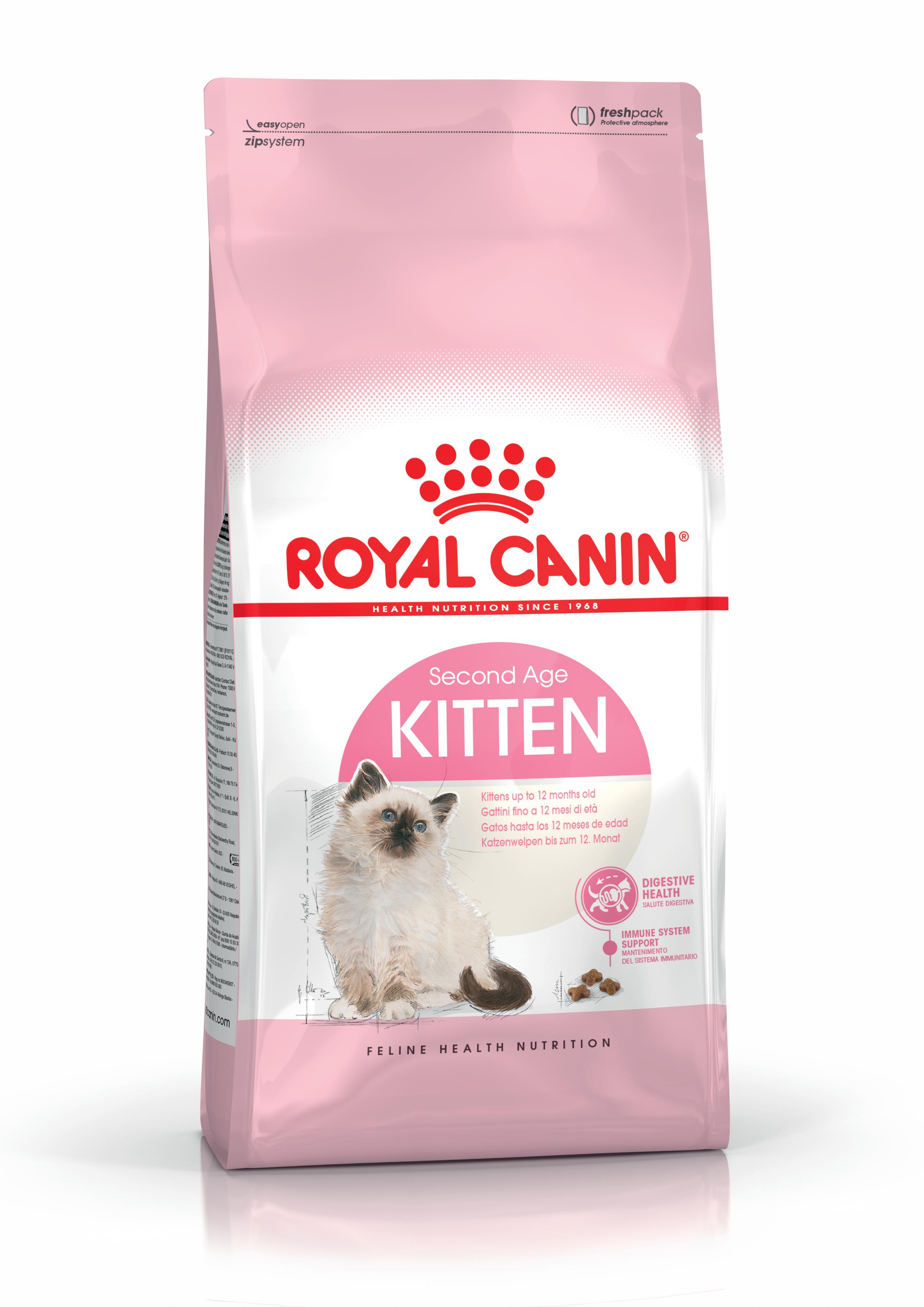 Kitten 10 Kg.