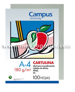 Cartulina Campus University 180gr A4 Gris (100u)