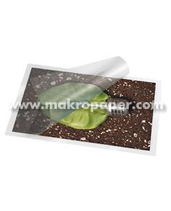 Plásticos para plastificadora A4 80micres (100u)
