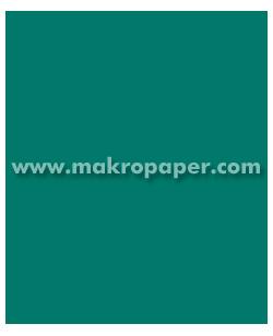 Cartulina 200gr 50x65 cm Verde Pino (25u)
