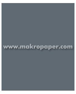 Cartulina 200gr 50x65 cm Gris Oscuro (25u)
