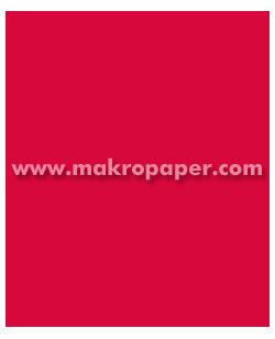 Cartulina 200gr 50x65 cm Rojo (25u)