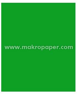 Cartulina Guarro Iris 50x65 Verde Billar