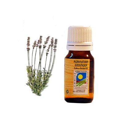 Aceite esencial Espliego 10 ml. Ecoaromuz
