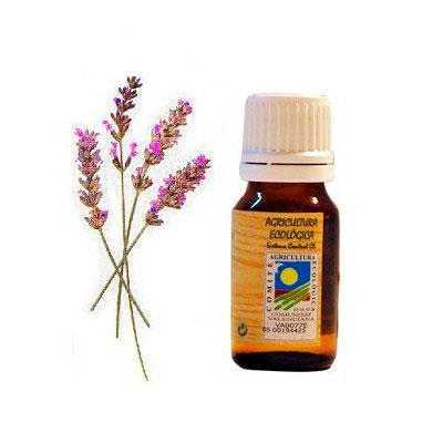 Aceite esencial Lavandin 10 ml. Ecoaromuz