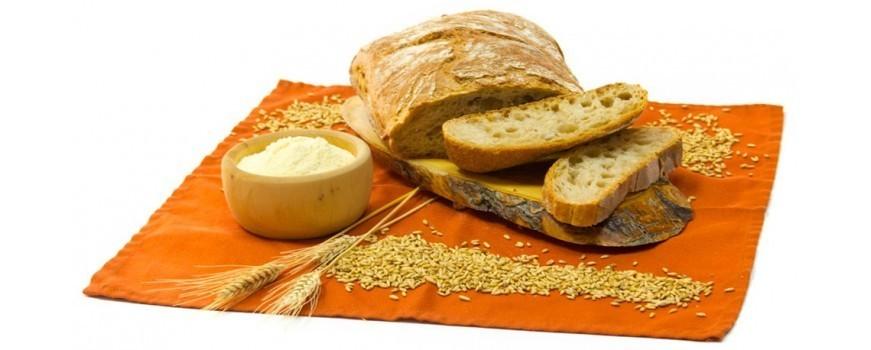 Pan, harinas y levaduras