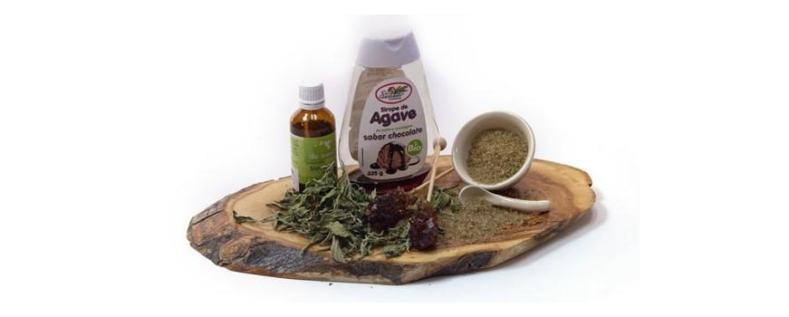 Stevia,  Siropes y azúcar ecológico