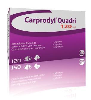 Carprodyl Quadri 120mg (120 Comprimidos)