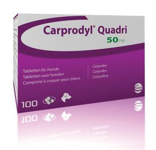 Carprodyl Quadri 50mg (100 Comprimidos)