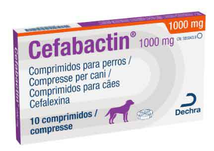 CEFABACTIN 1000mg (10 Comprimidos)