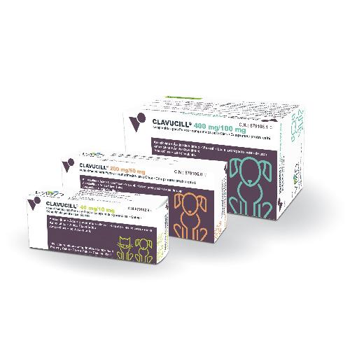 CLAVUCILL 250mg - 100 Comprimidos