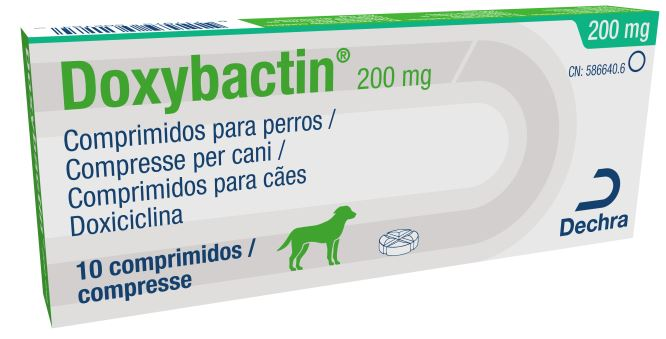 DOXYBACTIN 200 MG 10 COMP