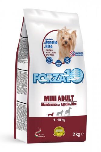 FORZA10 MEDIUM Mantenimiento Cordero y Arroz 2kg