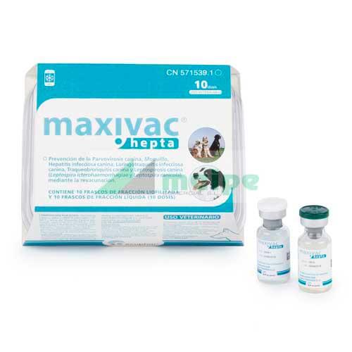 Maxivac Hepta 10 Dosis