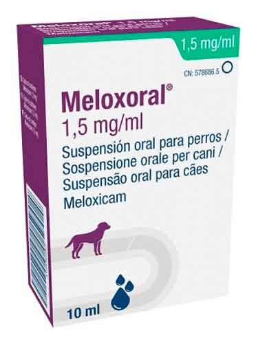 MELOXORAL PERROS 10 CC