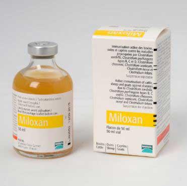 MILOXAN 50 CC.