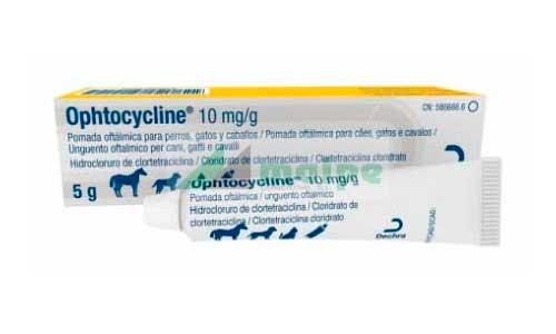 OPTHOCYCLINE 5 GR (POMADA OFTALMICA)