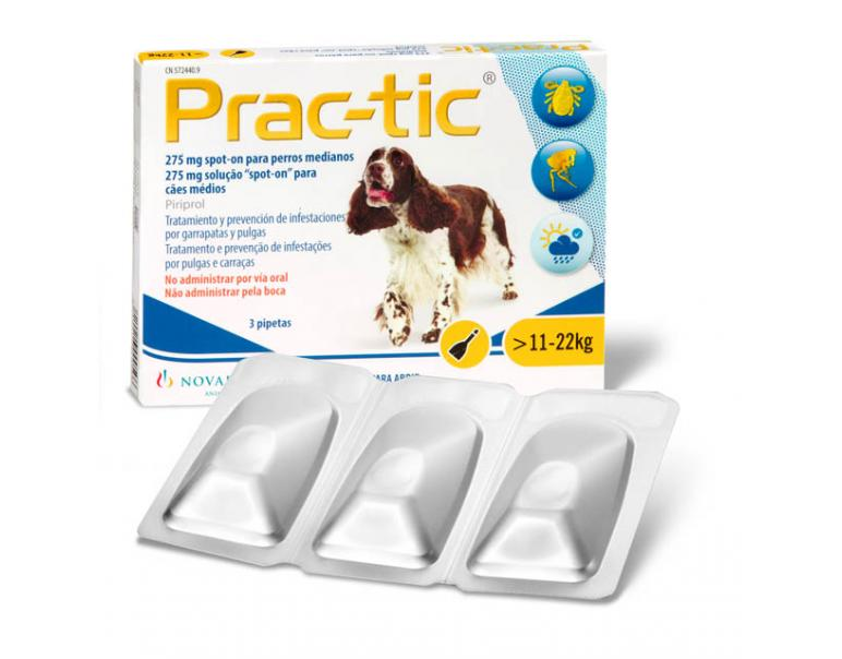 PRACTIC Perro 11-22kg (3 Pipetas)