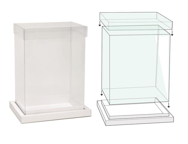 Boîte transparent avec socle