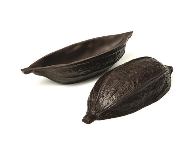 Mitad habas cacao