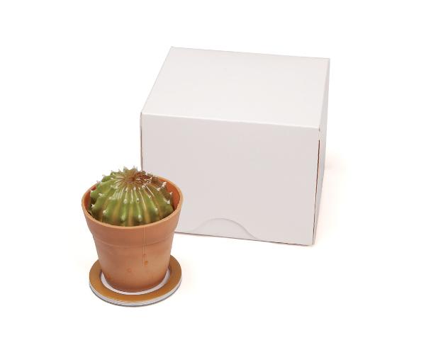 Caja individuales