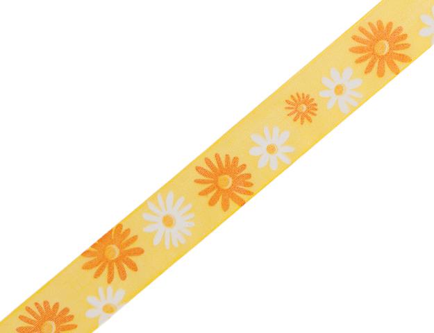 Ruban Margarite jaune