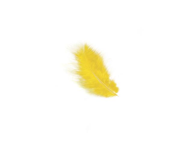 Plumes jaune