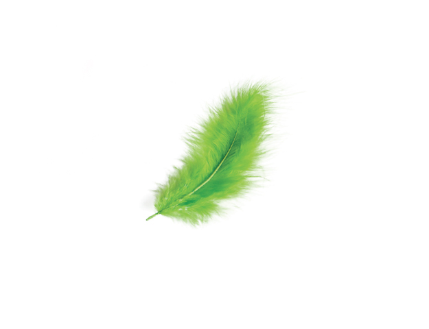 Plumes vert