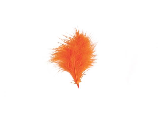Plumes orange