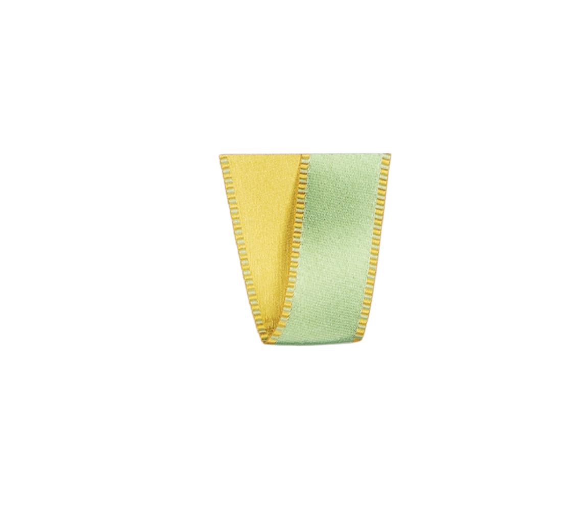 Ruban Passion vert clair 25 mm 25 m